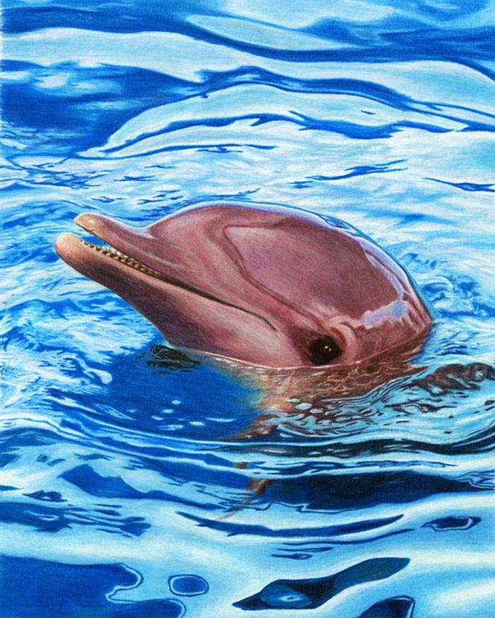 corrina-thurston-dolphin