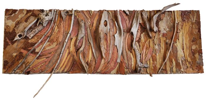 dianne-shullenberger-eucalyptus
