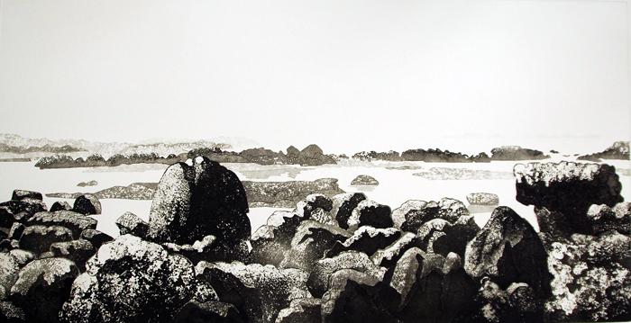 claire-van-vliet-Basalt-Reef-Moeraki-New-Zealand